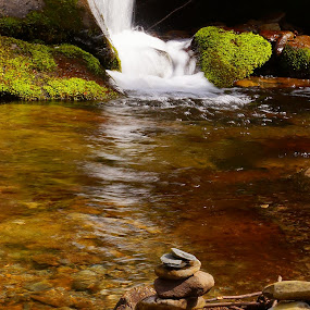 Life's a Balance by Beth Collins - Landscapes Waterscapes ( water, stream, park, national, forest, woods, mountain stream, moving water, national park, nature, trail, movement, roarking fork motor nature trail, motion, smoky mountains national park, smoky mountains,  )