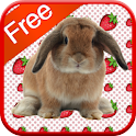 Bunny Games for Kids - Free icon