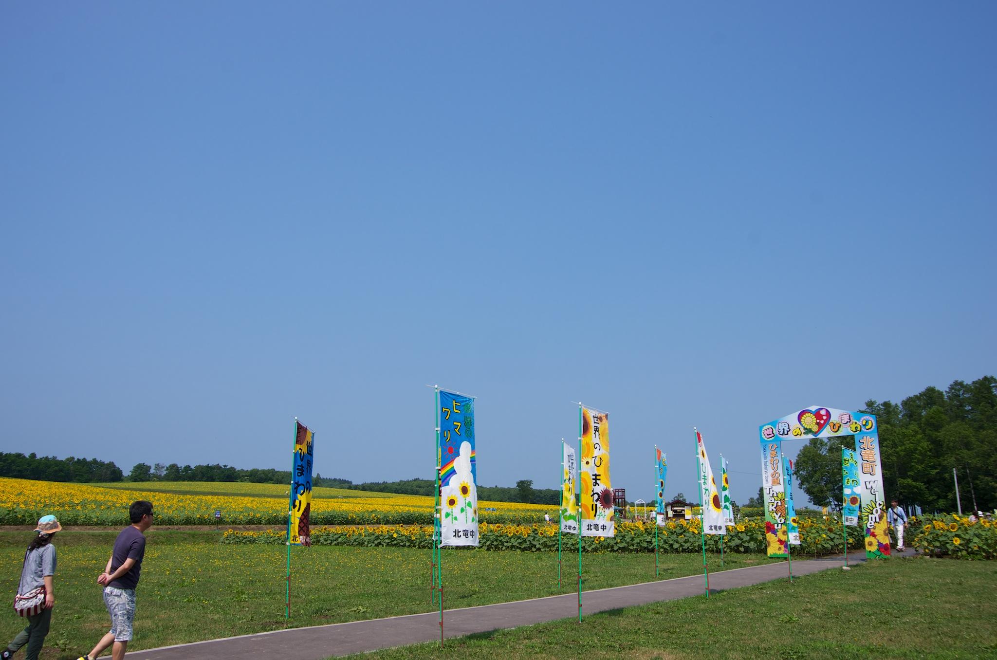 Photo: ひまわりの里・2014年7月29日