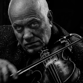 The Violinist by Tawfik Dajani - People Musicians & Entertainers