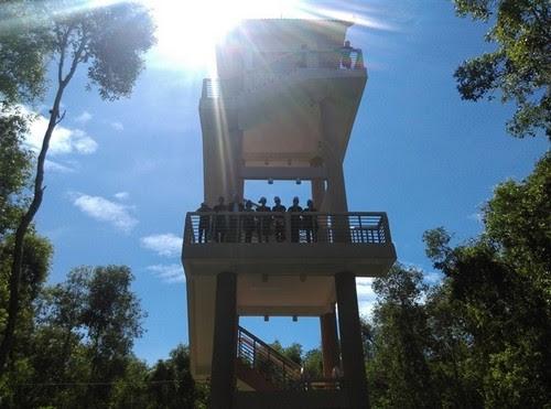 Về làng nổi Tân Lập khám phá rừng tràm 2
