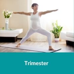 Prenatal Yoga - Trimester verstehen
