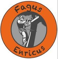 Sporting Sint-Gillis-Waas Onze hoofdsponsors Fagus