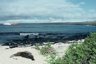 Photo: Española, Galapagos.