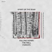 Forests EP