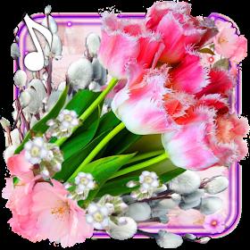 Тюльпаны Нежная весна Живые Обои