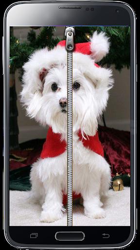 Stylish Puppy Screen Lock