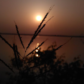 Sun set  by Mainak Das - Landscapes Sunsets & Sunrises