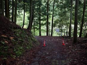 林道から県道へ