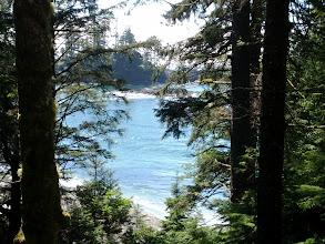 Photo: Half Moon Bay through the trees