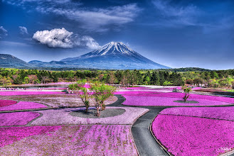 Photo: Good morning to you from Europe, Just want to share a picture of Mount Fuji I took this May with you  ヨーロッパからおはようございます、この5月に撮った富士山の写真を皆様と共有させていただきたいと思います。 Other photos are available in my page, thank you!!他の写真は下記の私のページにアップしていますので、よろしくお願いいたします。https://www.facebook.com/midoriphoto