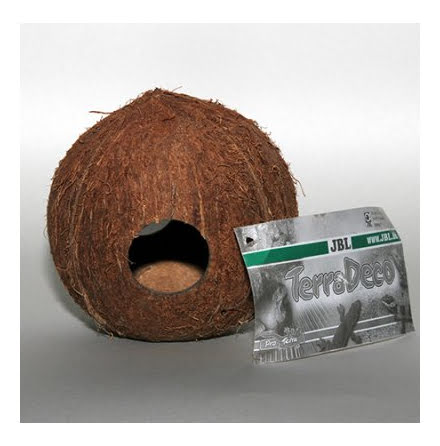 JBL Cocos Cava 3/4 Large
