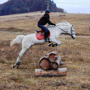 Cross Country Jumping in Romania