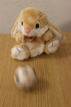 Photo: Bunny and Soccer