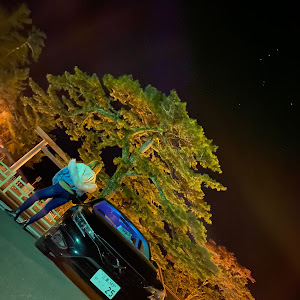 マークX GRX130のカスタム事例画像 Rinapopoさんの2020年11月26日01:41の投稿
