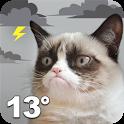 Grumpy Cat Weather icon