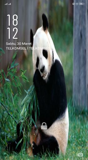 Wallpaper Panda HD screenshot 4