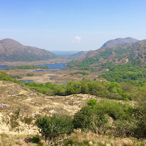 Killarney Lakes by Annie Cator - Landscapes Mountains & Hills ( mountains, killarney, park, lakes, view )