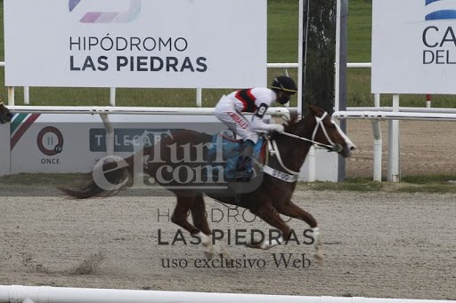 Fina Y Elegante (Fund of Funds) se adjudica Condicional (1000m-Arena-LPI).