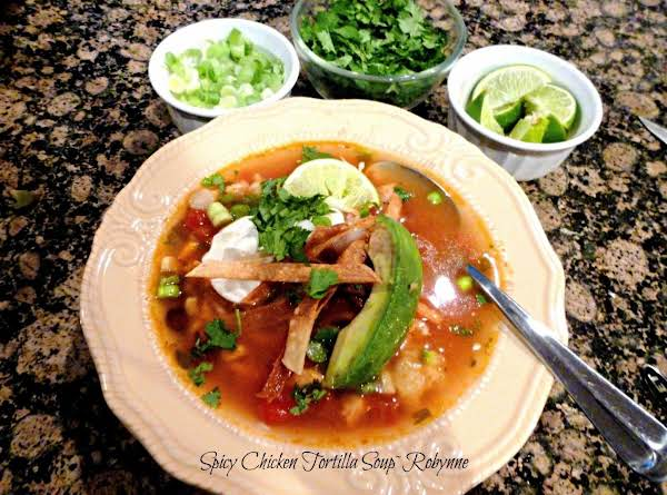 Spicy Chicken Tortilla Soup~robynne Recipe