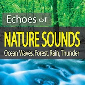 Echoes of Nature Sounds (Ocean Waves, Forest, Rain, Thunder)