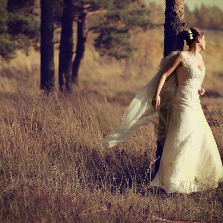 Wedding photographer Sergey Afonichev (SAfonichev). Photo of 27.12.2017
