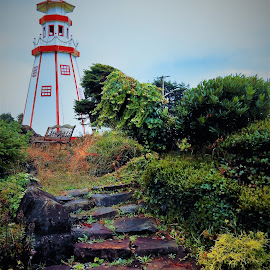 Step up to the lighthouse by Lavonne Ripley - Artistic Objects Still Life