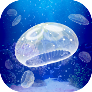 jellyfish pet android apps on google play. Black Bedroom Furniture Sets. Home Design Ideas