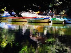 Photo: Csónakázó tó - Miskolctapolca -Boating Lake - Miskolctapolca