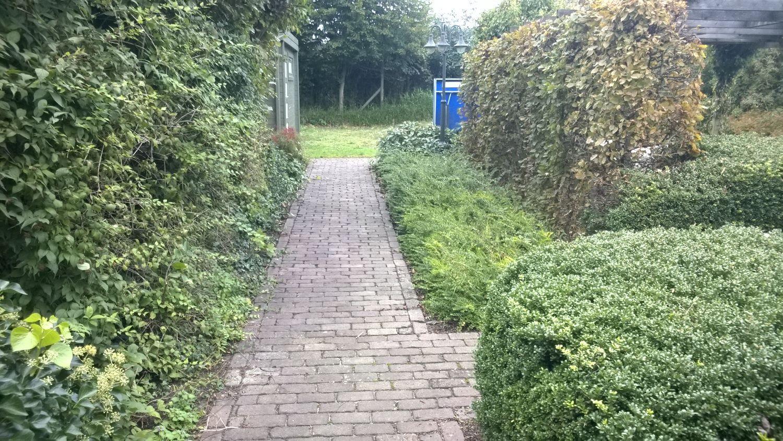 De Witte Roos Garden Projects foto