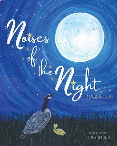 Noises of the Night cover