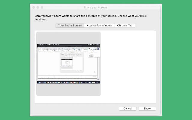VocalViews Screen Capturing