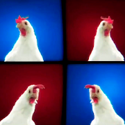 Techno Chicken Song