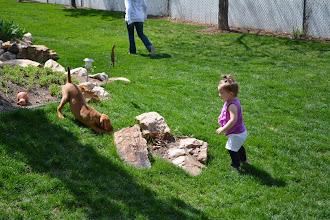 Photo: Akela wanting Kourtlyn to play