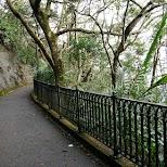 Lugard road has the best views of Hong Kong in Hong Kong, , Hong Kong SAR