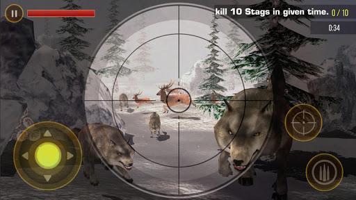 Deer Hunting 2019