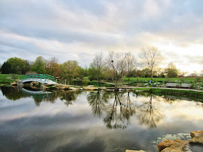Photo: Reflection of flowers, trees, and bridge on a pond at Cox Arboretum in Dayton, Ohio.