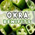Okra Benefits icon
