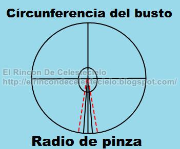 Radio de pinza