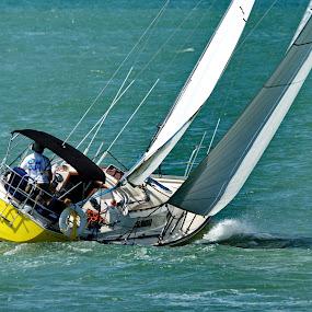 Hard Over by David Clare - Transportation Boats ( water, fort malden, summer, sail, boat,  )