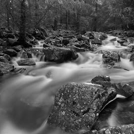 by Wiggo Løvik - Black & White Landscapes (  )