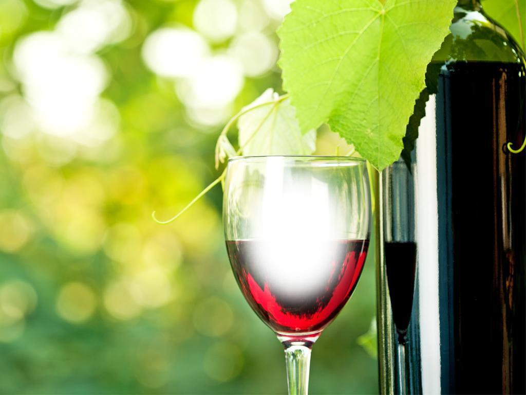 wine glass frames photo effect screenshot - Wine Picture Frames