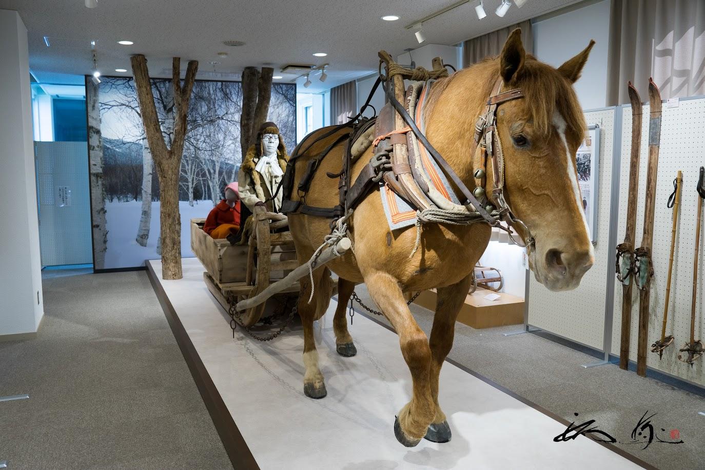 馬そりの復元