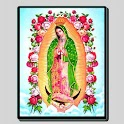 Virgen de Guadalupe icon