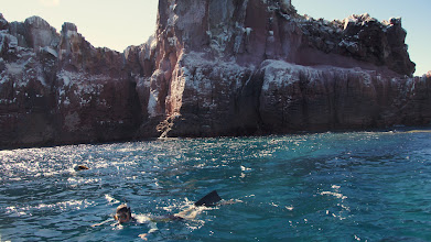 Photo: Snorkeling for Sea lions