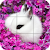 Puzzle - Cute bunnies file APK for Gaming PC/PS3/PS4 Smart TV
