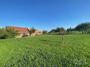 terrain à Waldolwisheim (67)