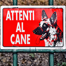 Photo: Beware of the dog