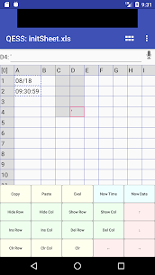 QESS free – Quick Entry Spread Sheet 3