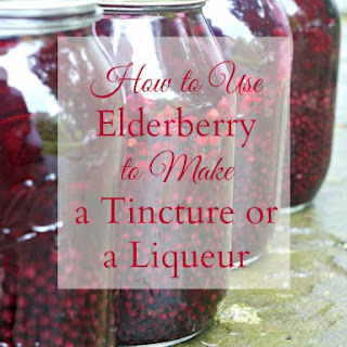 Elderberry Tincture or Liqueur